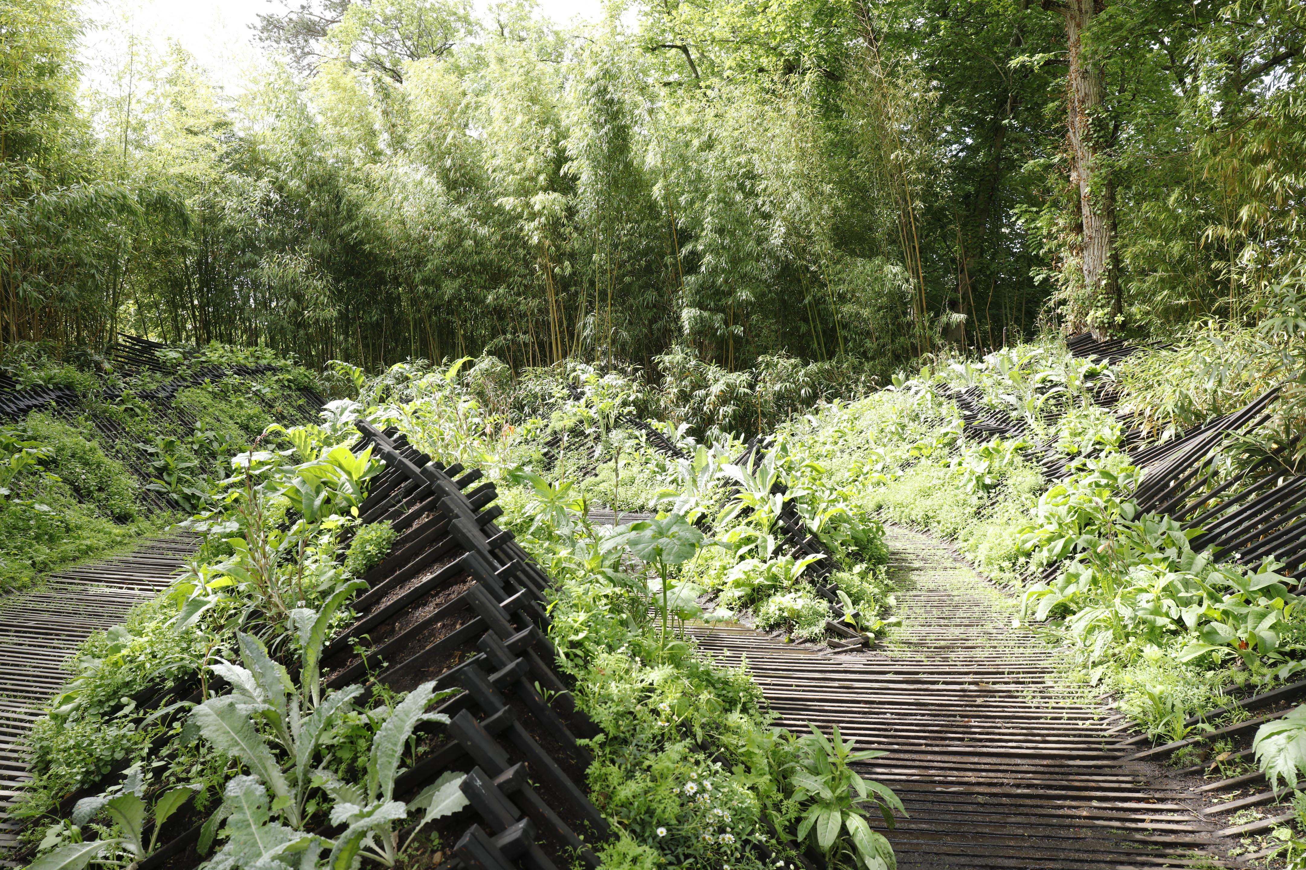 19bis phoenix domaine de chaumont sur loire - Chaumont sur loire jardins ...