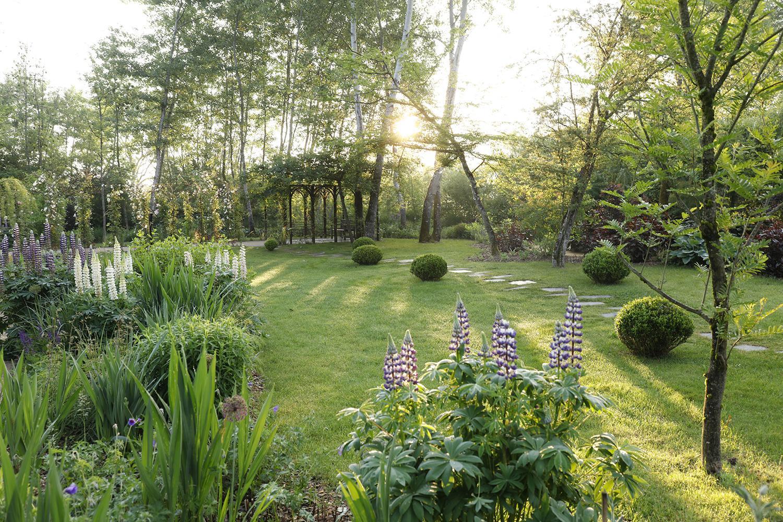 Les Jardins À L Anglaise le jardin anglais   domaine de chaumont-sur-loire
