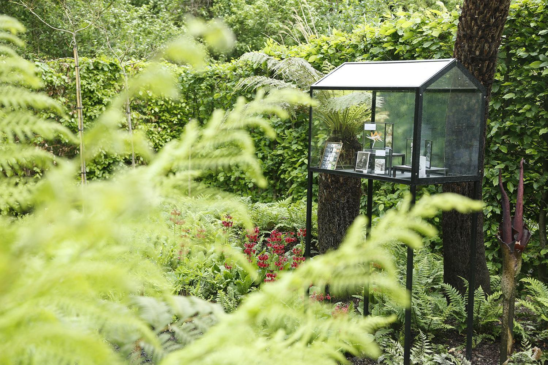 Les plantes du jardin sauvez la gloriette de buffon for Jardin les plantes