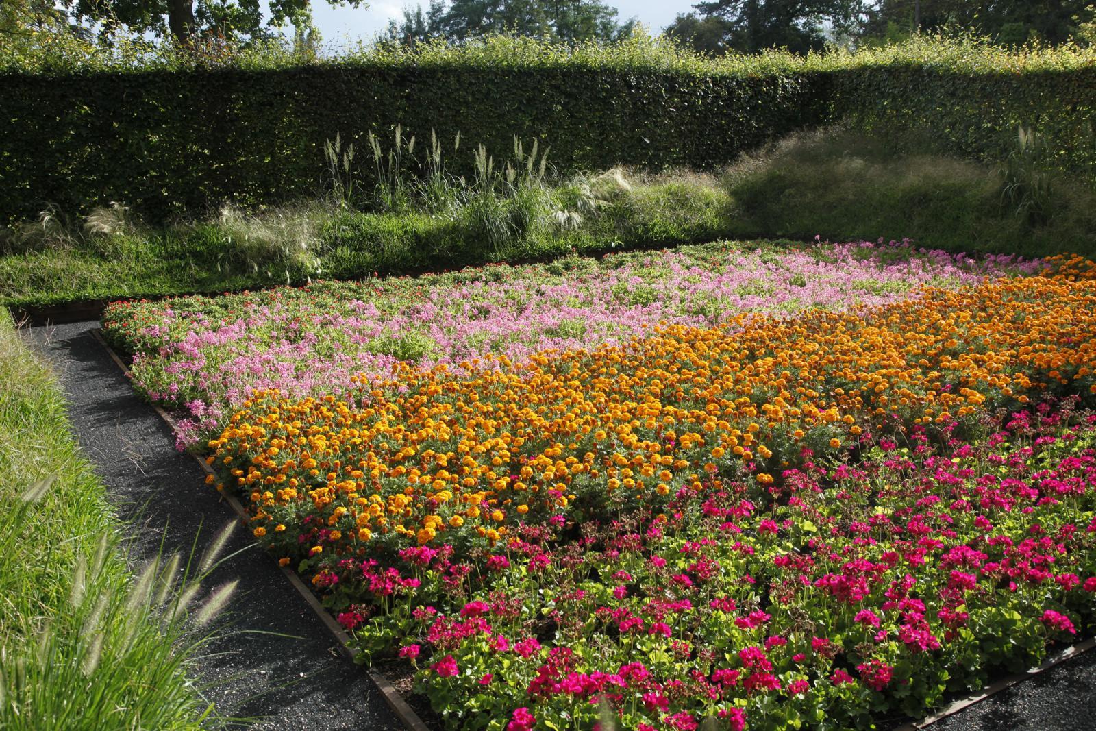 Festival Des Jardins Chaumont Sur Loire 2009 le jardin tableau | domaine de chaumont-sur-loire