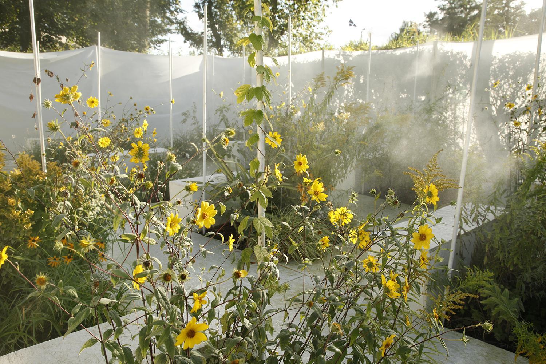 le jardin des couleurs captives domaine de chaumont sur. Black Bedroom Furniture Sets. Home Design Ideas