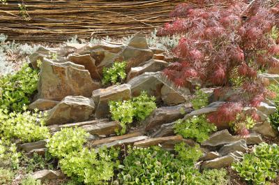 Le jardin chinois domaine de chaumont sur loire for Jardin chinois miniature