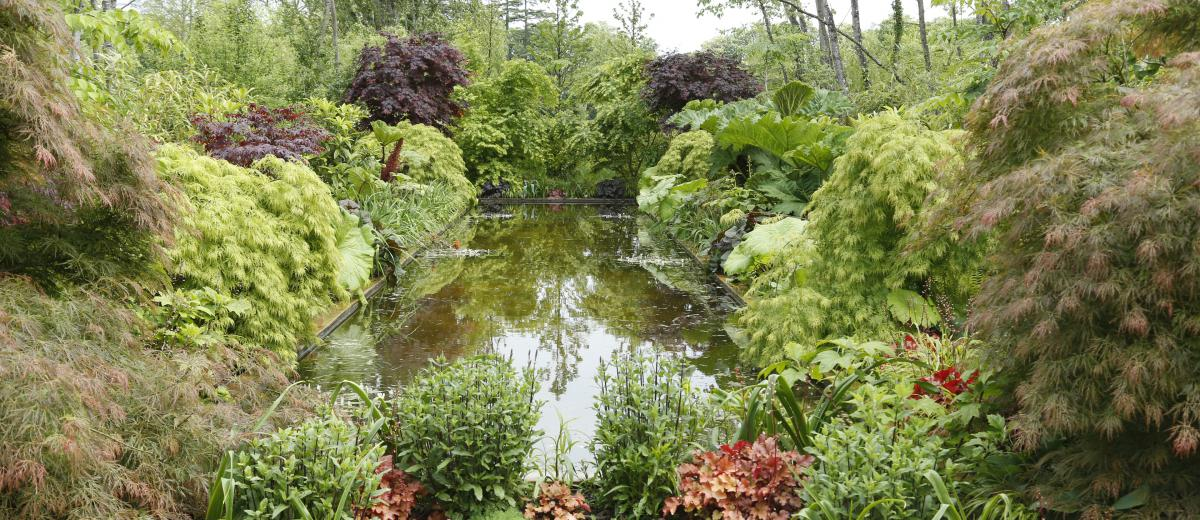 le jardin miroir domaine de chaumont sur loire. Black Bedroom Furniture Sets. Home Design Ideas
